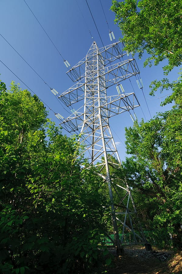 Power Line Tree Service